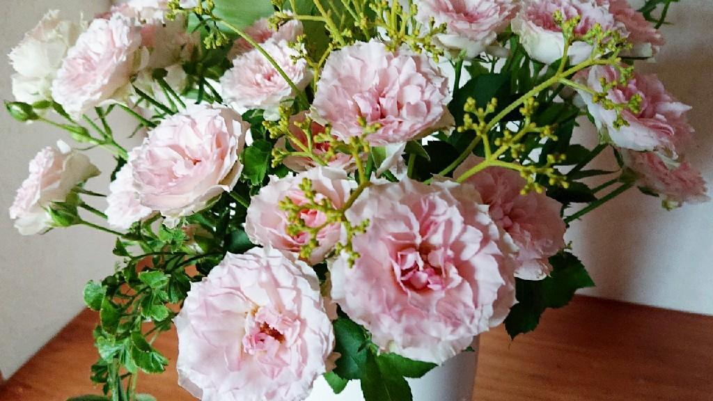 ピンク色で満たす日々***_e0290872_21244303.jpg