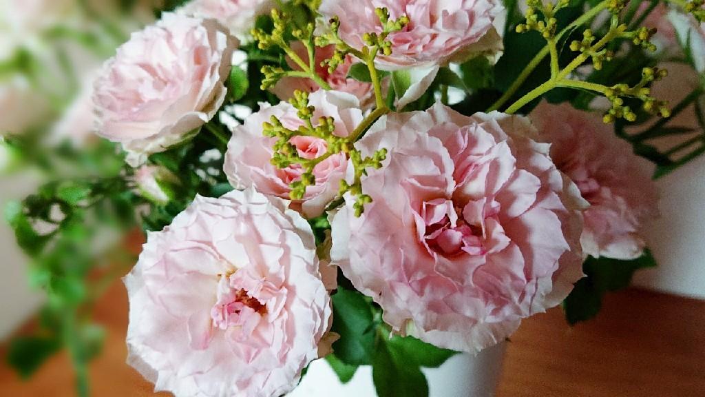 ピンク色で満たす日々***_e0290872_21245302.jpg