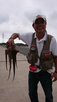★地続き堤防へチ釣りで真タコ釣れた★_e0147297_15220406.jpg