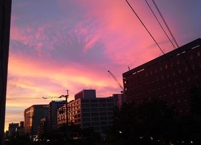 『夜のおはよう』野村まさこ第一歌集  大野英子_f0371014_07123682.jpg