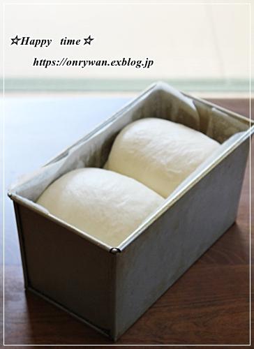 冷やし中華弁当とパン焼き~リクのつぶやき♪_f0348032_16525216.jpg