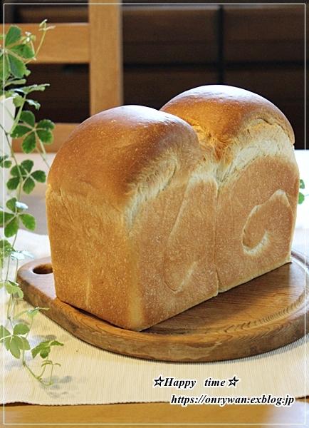 冷やし中華弁当とパン焼き~リクのつぶやき♪_f0348032_16533461.jpg