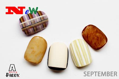 September NEW Design_e0284934_07515268.jpg
