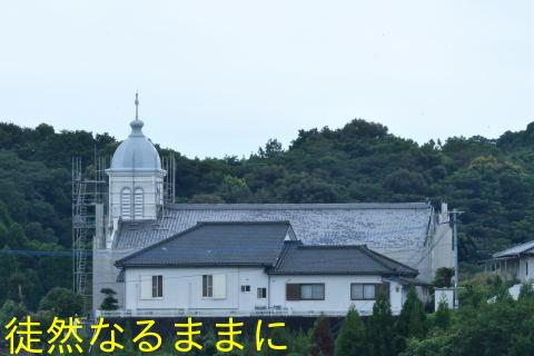 天草の蝶たち_d0285540_21335690.jpg