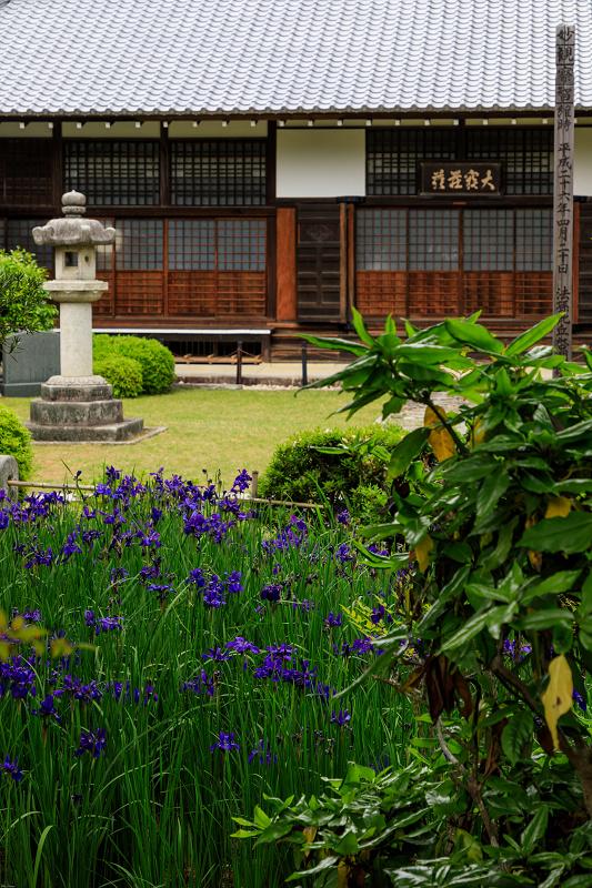 春の花咲く源光庵_f0155048_011450.jpg