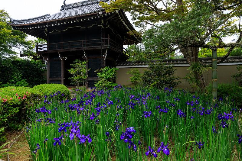 春の花咲く源光庵_f0155048_072137.jpg