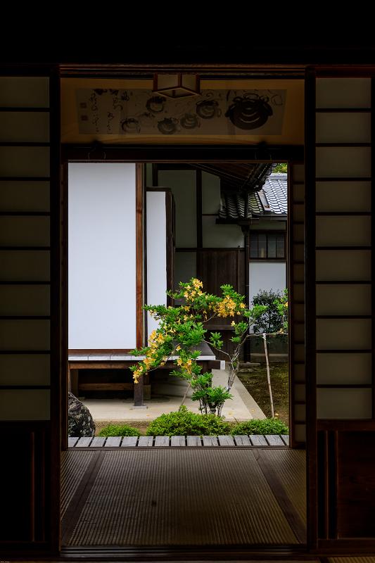 春の花咲く源光庵_f0155048_08186.jpg