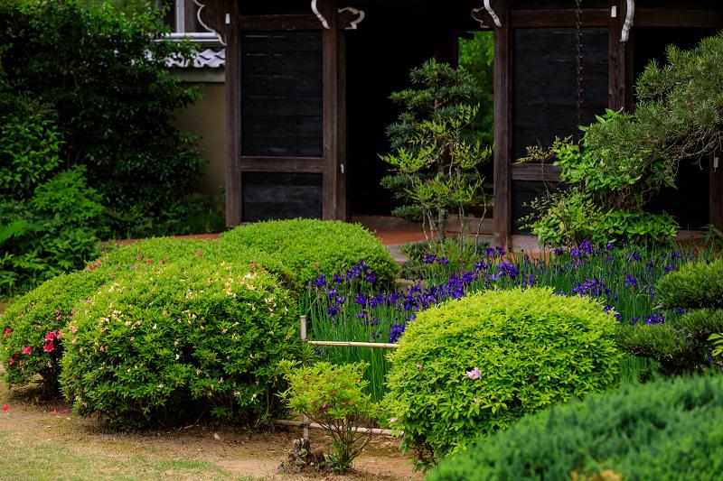 春の花咲く源光庵_f0155048_091141.jpg