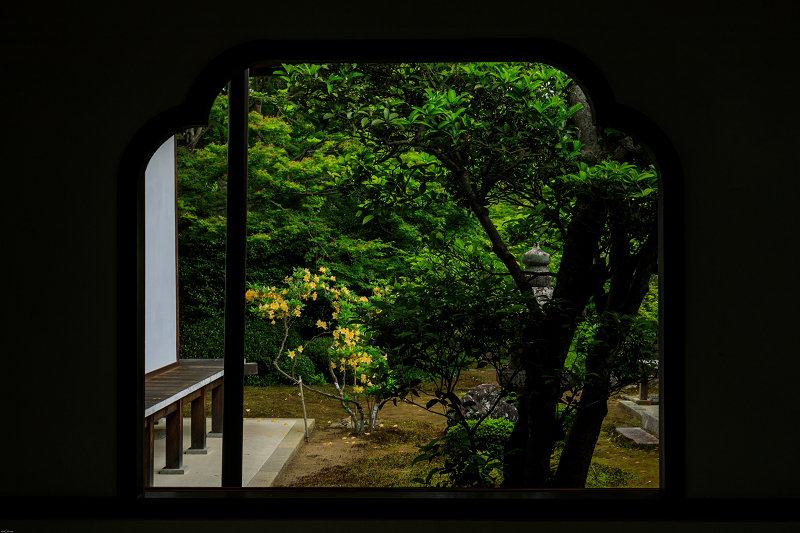 春の花咲く源光庵_f0155048_095422.jpg