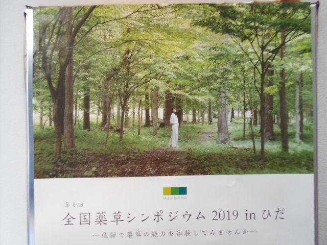 六本木の街なかに生まれた「飛騨空間」_b0050651_09032457.jpg