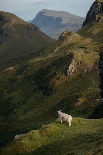 Isle of Skye, Scotland_f0013452_15034878.jpg