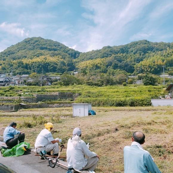 【二神です】安浦地域博物館プロジェクトの今!_e0175370_17121342.jpg