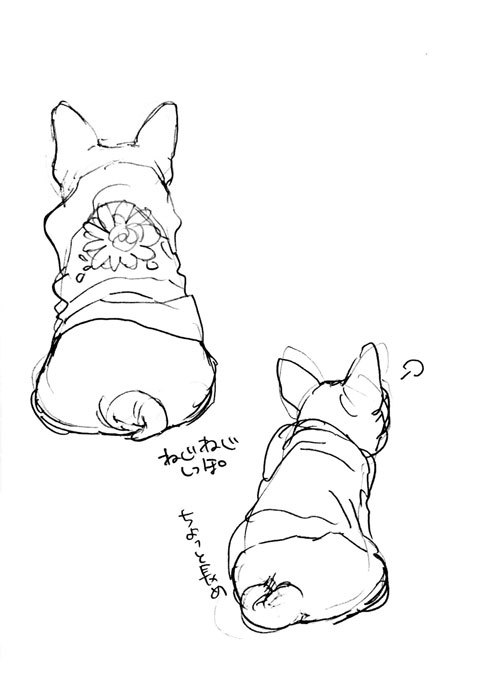 恋犬ネーム中_a0342172_21045247.jpg