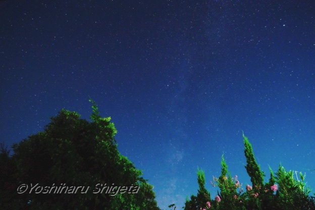 〜Milky Way〜_c0152400_09284098.jpg