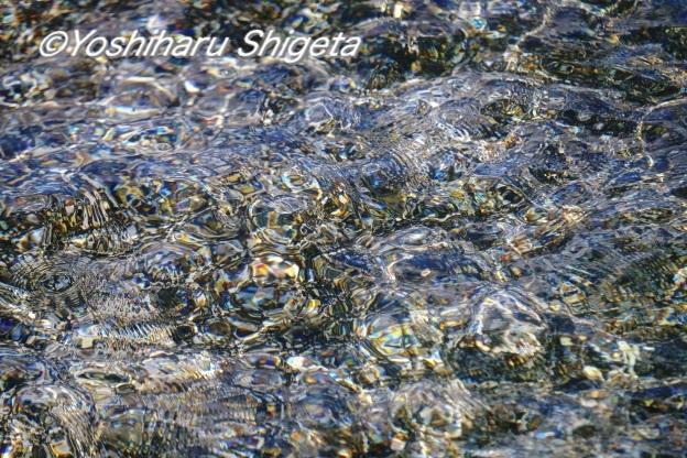 〜水の変幻〜_c0152400_15595642.jpg