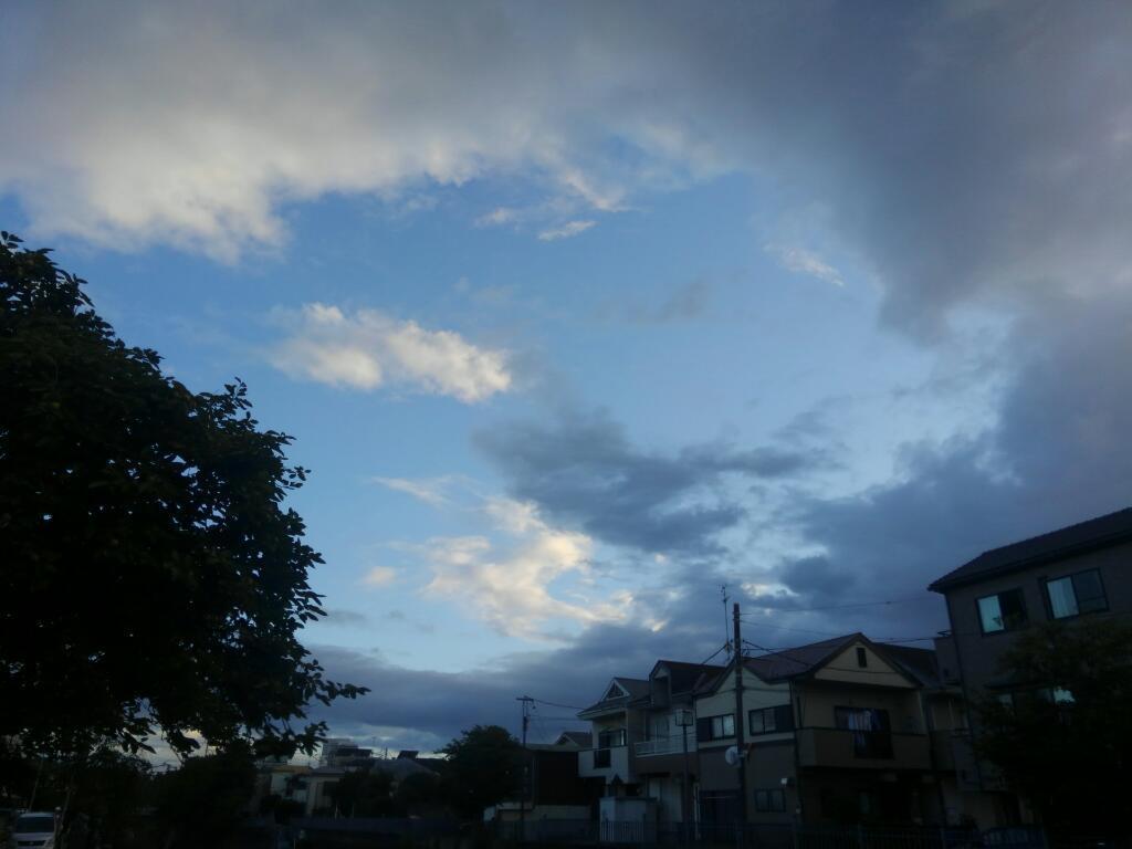 大岡川の空