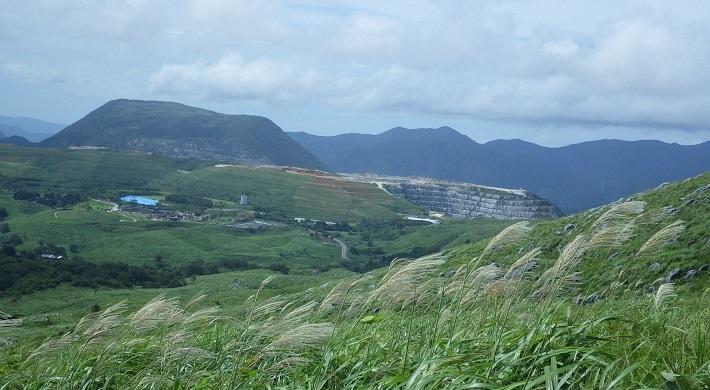 台風が来る前にお花散策_e0164643_14022899.jpg