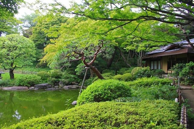 東京都庭園美術館_f0374092_22475397.jpg