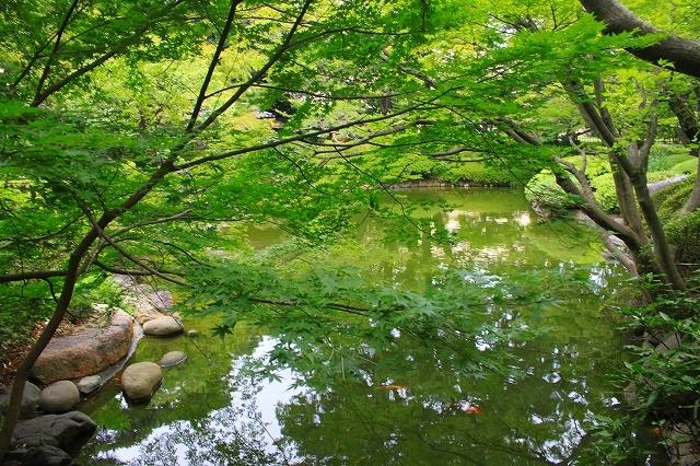 東京都庭園美術館_f0374092_22481165.jpg