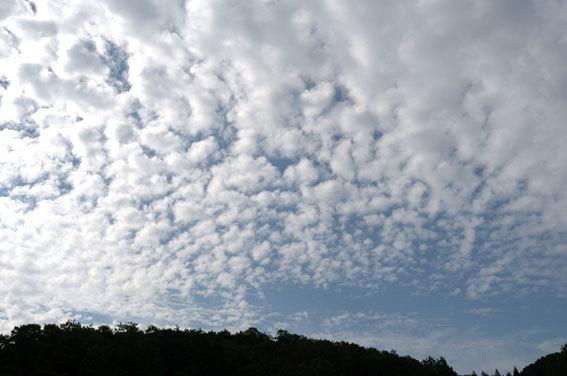 雲間から秋の太陽_b0145296_08135307.jpg