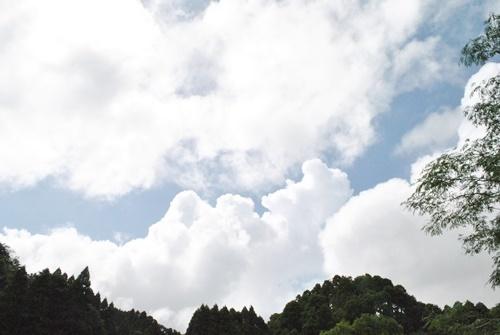 台風が来そうです_a0123836_15205235.jpg