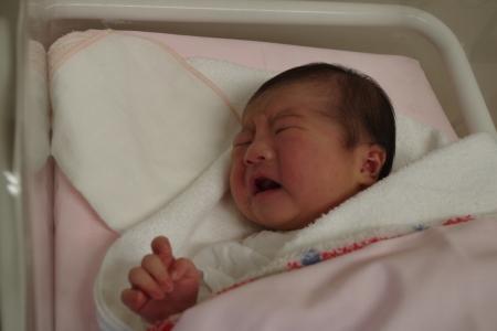 お待たせしました。 ハナちゃん誕生です。_f0114346_07145307.jpg