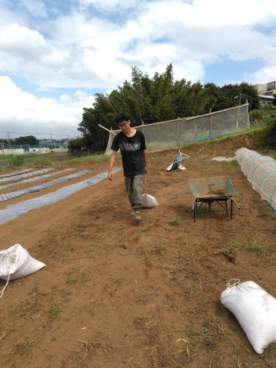 台風15号が来る前に 堆肥の運び入れ 長ねぎの土寄せ・・パラソルやテーブル椅子の養生_c0222448_12563822.jpg