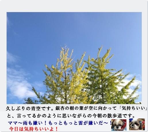 f0224350_12063704.jpg