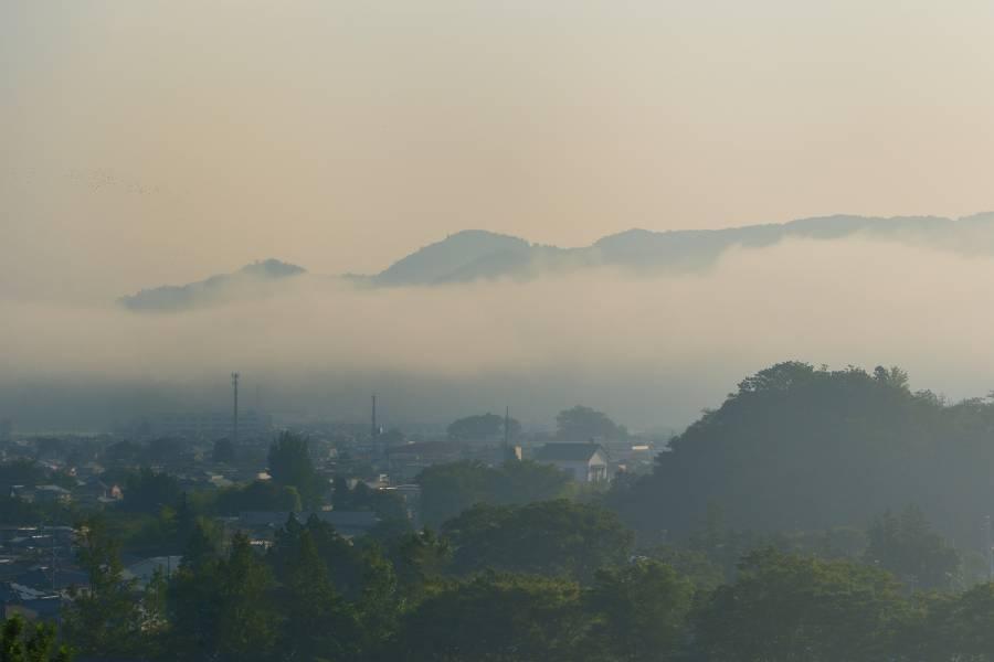 早朝の濃霧_b0223668_06523257.jpg