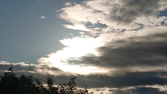 輝くエネルギー循環日***_e0290872_23131256.jpg