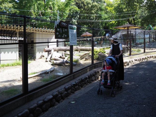 五月山動物園_f0370091_22572762.jpg