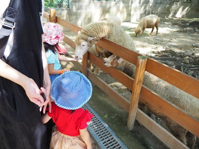 五月山動物園_f0370091_22573463.jpg
