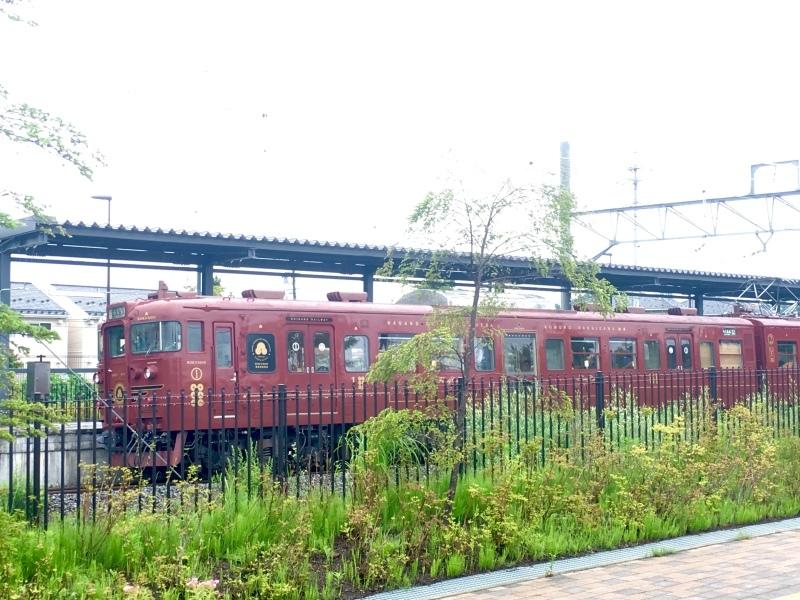 しなの鉄道115系湘南色とろくもんと。_d0367998_07132114.jpeg