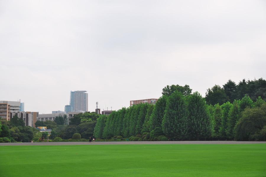 新宿御苑の夏の終わり3_a0263109_21275737.jpg