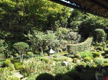 京都大原散策(岡)_f0354314_00384103.jpg