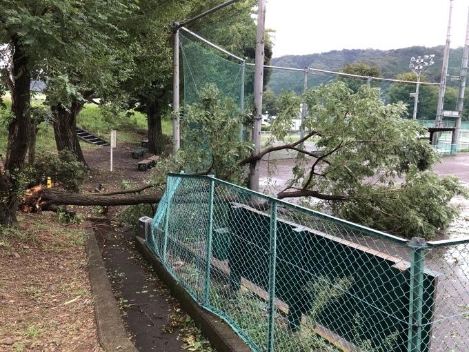 台風🌀🍃_d0155416_07502757.jpeg