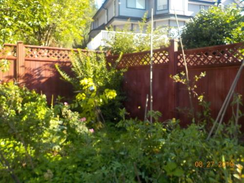 フェンスの塗装_a0173527_10001021.jpg