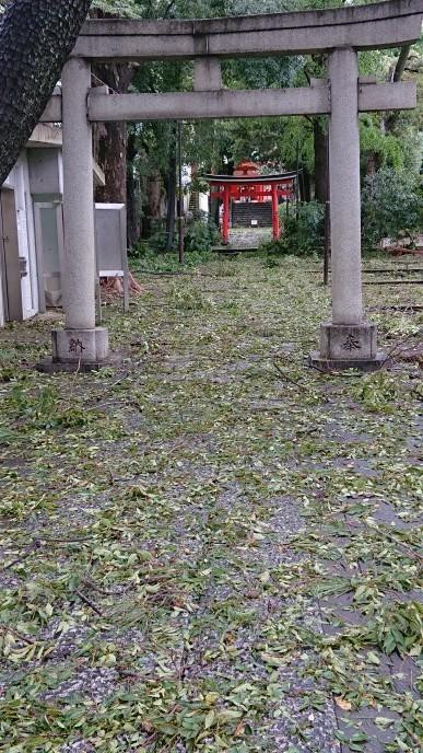 台風🌀❗_d0155439_19383536.jpg
