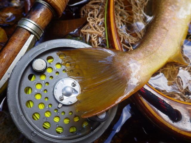 一日目の釣り【HIJET CARGO車中泊で輪釣】_f0053342_22255430.jpg