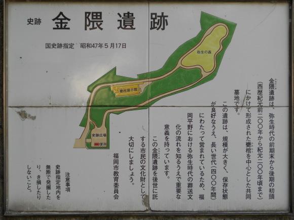 金隈弥生遺跡は 卑弥呼の時代まで六百年間継続し、136 体の人骨が出土_a0237545_11420268.jpg