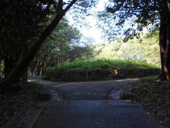 金隈弥生遺跡は 卑弥呼の時代まで六百年間継続し、136 体の人骨が出土_a0237545_17481130.jpg