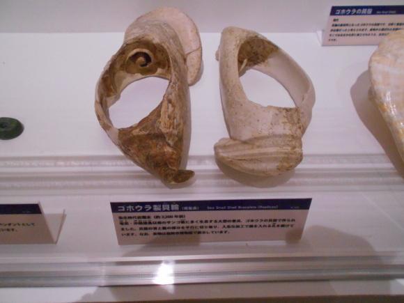 金隈弥生遺跡は 卑弥呼の時代まで六百年間継続し、136 体の人骨が出土_a0237545_23344473.jpg