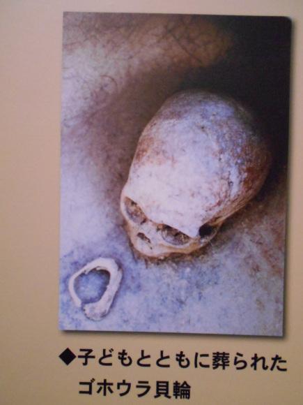 金隈弥生遺跡は 卑弥呼の時代まで六百年間継続し、136 体の人骨が出土_a0237545_23443146.jpg