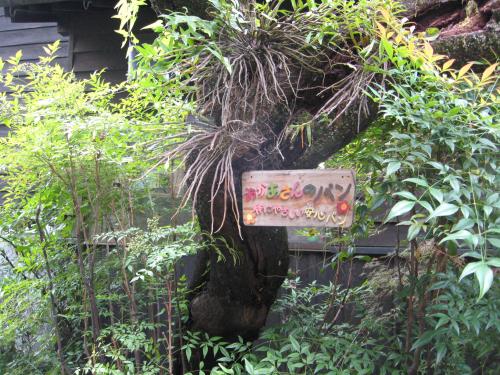 北九州の旅 小鹿田焼皿山の巻_b0153663_17432712.jpg