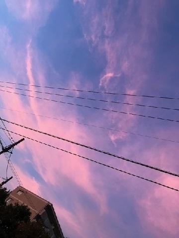 台風一過、蒸し暑い夜のお散歩_f0242002_10505958.jpg