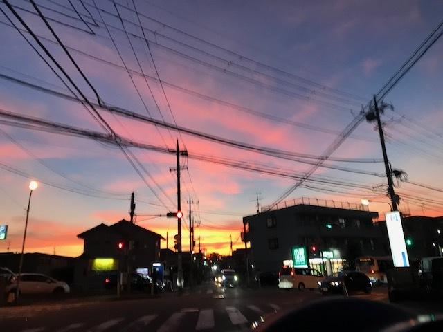 台風一過、蒸し暑い夜のお散歩_f0242002_10510239.jpg