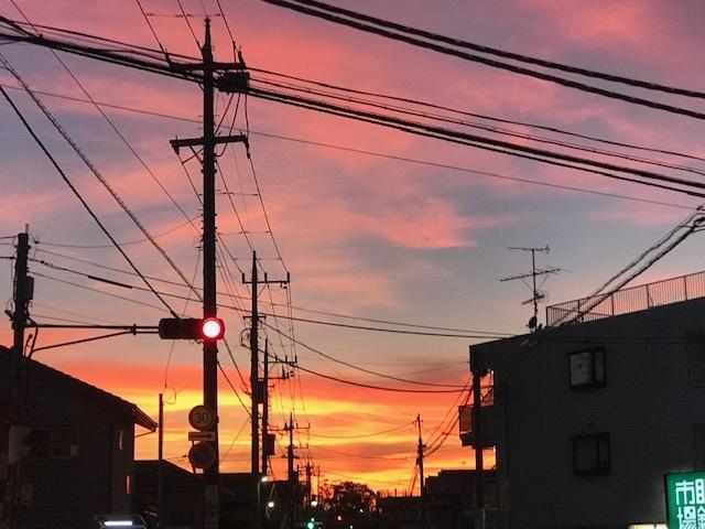 台風一過、蒸し暑い夜のお散歩_f0242002_10510624.jpg