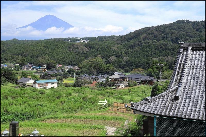 稲刈りの季節です_a0188405_14511180.jpg