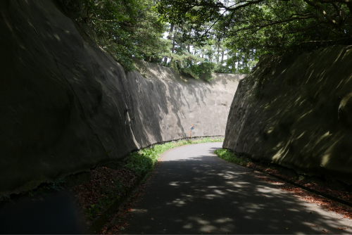 海界の村を歩く 日本海 飛島_d0147406_15131441.jpg