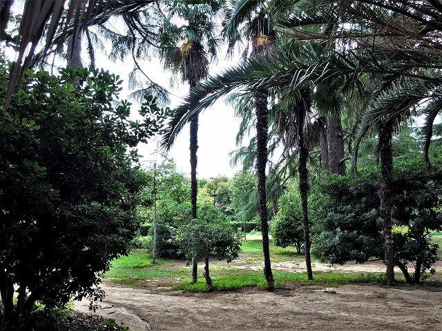ペドラルベス宮の庭でピクニック_b0064411_07341831.jpg